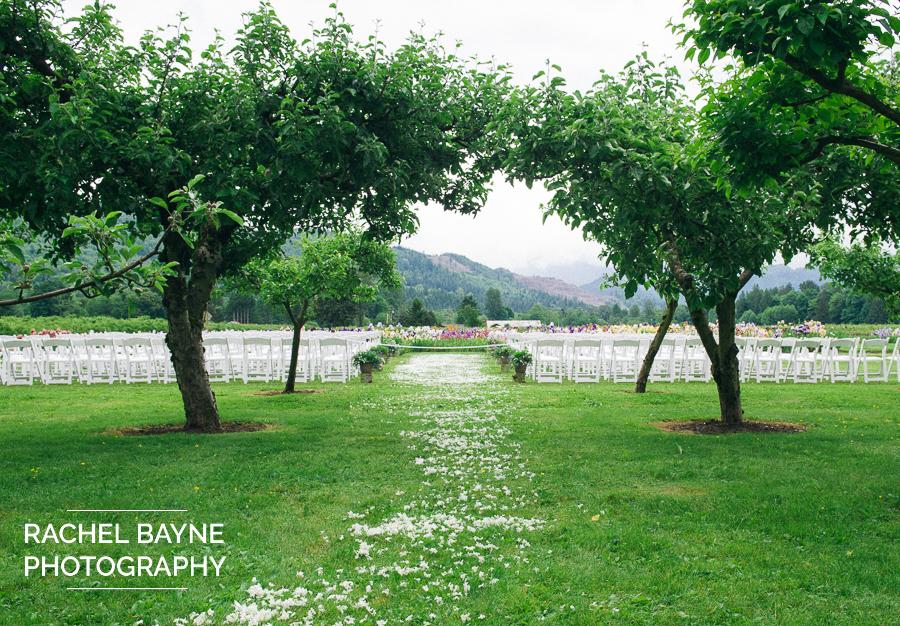 Bellingham Wedding Photographer - Bellingham Ferry Terminal - Farm Wedding
